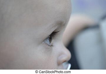 portrait of a baby, profile.