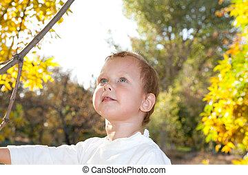 portrait of a boy in autumn
