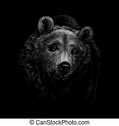 Portrait of a brown bear head on a black background