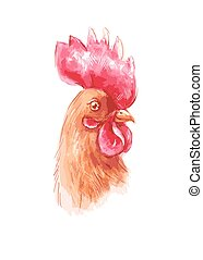 Portrait of a brown rooster in watercolor and colored pencil, vector illustration