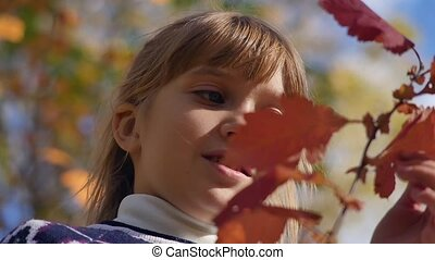Portrait of a child on a background of autumn leaves. The...