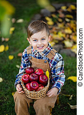 Portrait of a cute boy in the garden with a basket of red apples.