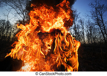 Portrait of a fiery devil.