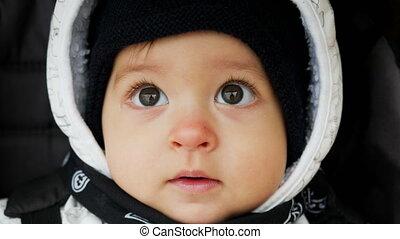 portrait of a little baby boy in the hoodie