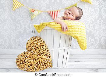 Portrait of a little boy sleeping in a wicker basket