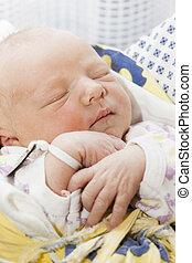 portrait of a newborn baby girl in maternal hospital