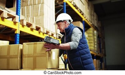 Portrait of a senior male warehouse worker or a supervisor...
