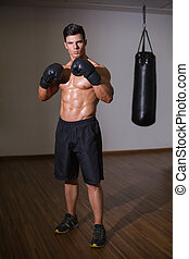 Portrait of a shirtless muscular boxer