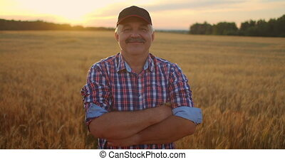 Portrait of a smiling Senior adult farmer in a cap in a field of cereals. In the sunset light, an elderly man in a tractor driver after a working day smiles and looks at the camera.