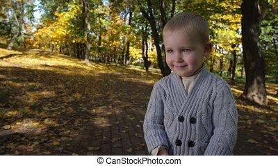 Portrait of adorable little boy among autumn park