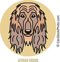 Portrait of Afghan Hound. Vector illustration in style of flat
