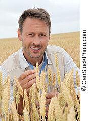 Portrait of agronomist analysing wheat ears
