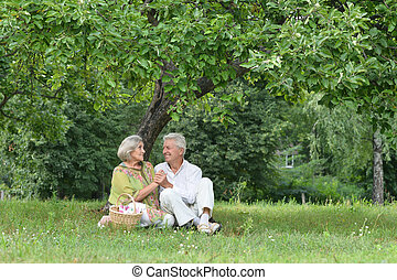 Amusing old couple on picnic