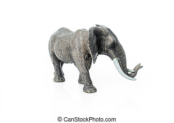 Portrait of an elephant isolated on the white background.