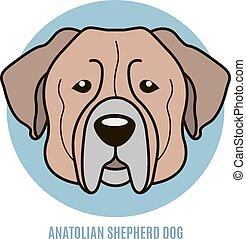 Portrait of Anatolian Shepherd dog. Vector illustration in...