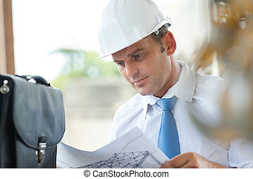 portrait of architect looking at blueprints in office