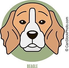 Portrait of Beagle. Vector illustration in style of flat