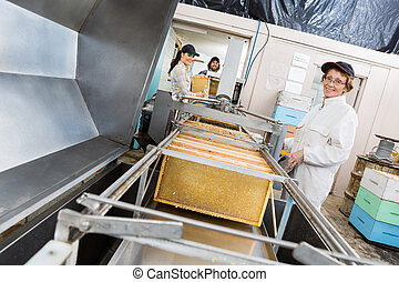 Portrait Of Beekeeper Working On Honey Extraction Plant