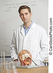 Portrait Of Biology Teacher In Classroom