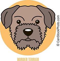 Portrait of Border Terrier. Vector illustration