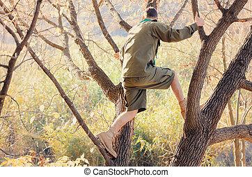 Portrait of Boy Scout Standing in Tree