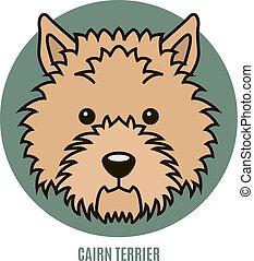 Portrait of Cairn Terrier. Vector illustration