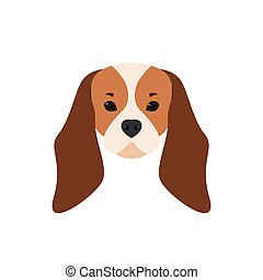 Portrait of Cavalier King Charles Spaniel.