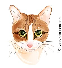 portrait of charming ginger cat