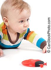 Portrait of cute baby boy