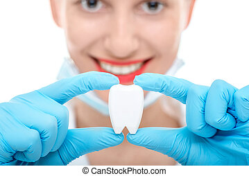Portrait of dentist with tooth on white background