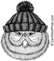 Portrait of fluffy persian cat Cool animal wearing knitted winter hat. Warm headdress beanie Christmas cap for tattoo, t-shirt, emblem, badge, logo, patch