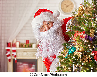 Santa Claus - Portrait of funny Santa Claus