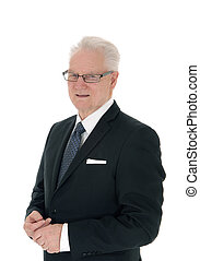 Portrait of handsome senior businessman.
