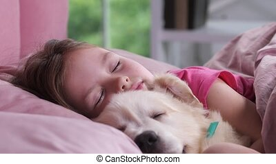 Portrait of little girl sleeping with puppy in bed -...