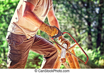 lumberjack  - portrait of lumberjack in nature