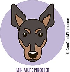 Portrait of Miniature Pinscher. Vector illustration in style of flat