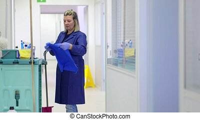 Portrait of professional cleaner - Women at work, portrait...