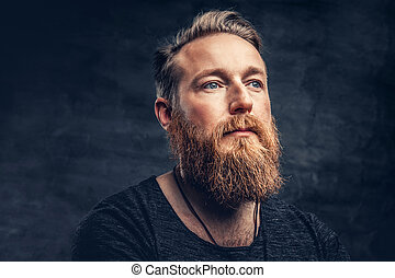 Portrait of redhead bearded male. - Close up portrait of ...
