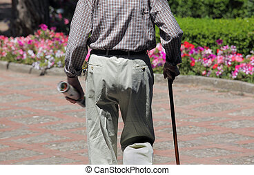 Portrait of senior man walking in park