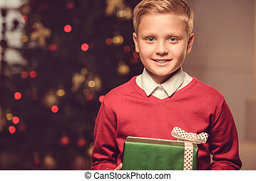 smiling child with christmas gift