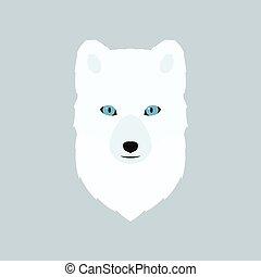Portrait of the arctic fox.