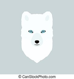 Portrait of the arctic fox.