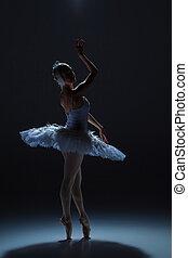 Portrait of the ballerina in ballet tatu on dack background...