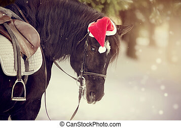 Portrait of the saddled horse in a cap in a a red Santa...
