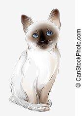 portrait of the  thai cat