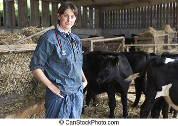 Portrait Of Vet In Barn With Cattle