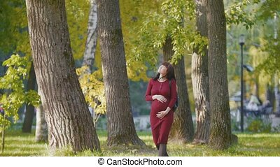 Portrait of young pregnant woman smiling - standing at autumn park