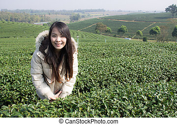 Portrait Thai woman in tea plantation , Chiangrai Thailand