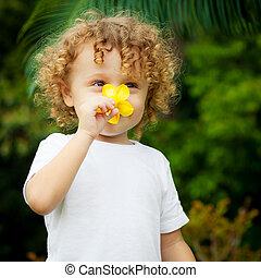 portret, chłopiec, mały, kwiat, ręka