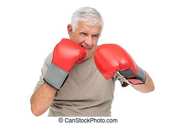 portret, szczelnie-do góry, bokser, zdeterminowany, senior